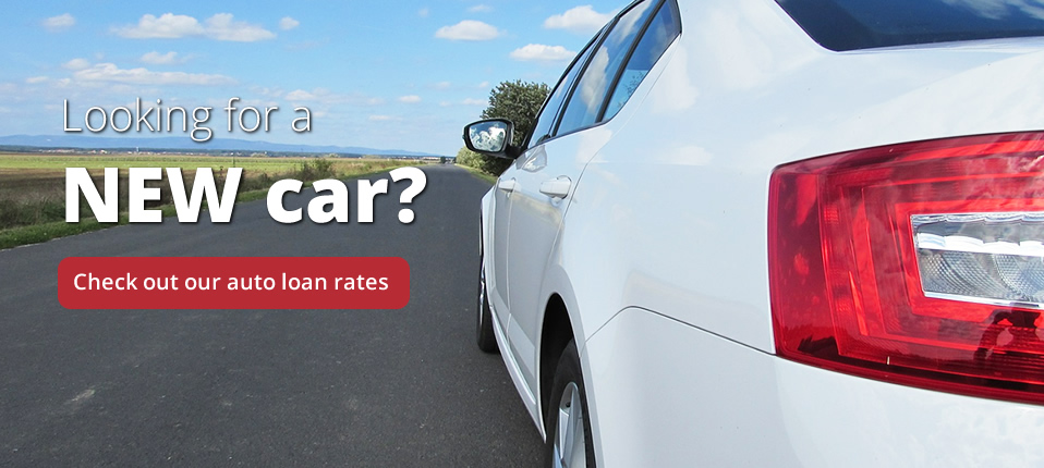 View our auto rates